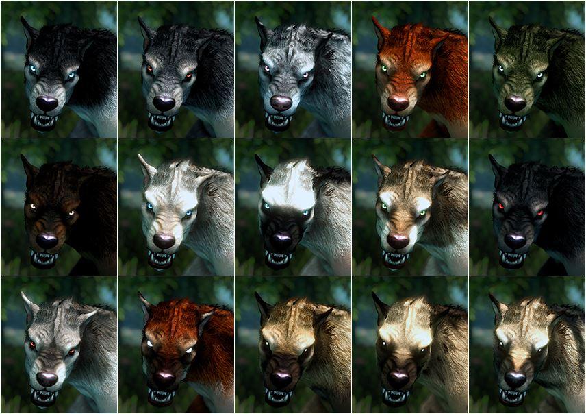 rencontre avec un loup garou